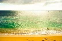 Hawaii / by Brooke Belcher