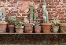 Jardines | aire libre | verde:: / En contacto con la naturaleza...