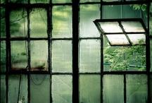 Coleccionando ventanas::
