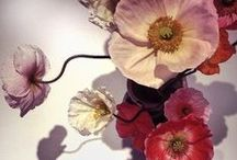 Floral design / I love flowers and when their natural beauty is enhanced by clever floral design, its a heavenly mix.