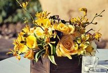 Floral Design Ideas / by Bethany .