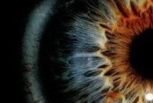 Eyes / by Venus Cole