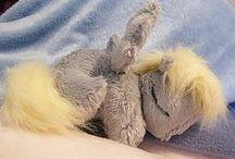 My Little Pony / by Libby Edwardson