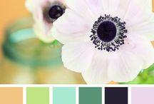 Hue Need Color ;) / by Carey @ Addie & George