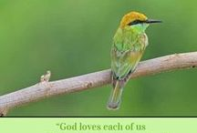 Catholic Ecards / This is my new site. Starting small like I did with Franciscan Cards and building it up day by day. Fun!