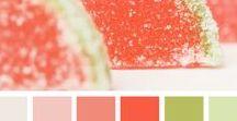 Captivating Colors