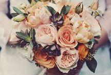 // wedding // / by Blair Canady