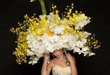 Flowers / Beautiful Flowers / by Wanda Crossley  Matthews House & Garden