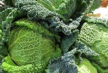 Potager~Vegetables~Planting~Growing / Vegetables,vegetable gardens,planting,eating,growing