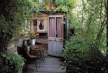 Inviting Gardens / by Chrissy Nowak