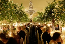 Floral Centerpiece inspiration  / #flowers #floral #centerpieces #wedding #flowercenterpiece #weddingflowers / by Miss Fancy Plants