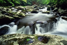 Seasons in the Smokies: Vacation in Gatlinburg, Pigeon Forge, Wears Valley / Check out all the fun activities and vacation rentals available in Gatlinburg, Pigeon Forge and Wears Valley, TN! Your vacation in the Great Smoky Mountains awaits. Whether you're looking for a calm two-hour walk through the mountains or a full day of action-packed adventure, the Smokies have a place for you. You'll also find other things to do and top attractions when vacationing in the Smoky Mountains!  https://www.itrip.net/destinations/tn
