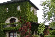 Sonoma County Wineries, Vacation Rentals, Trip Ideas / Napa and Sonoma counties in California have the luxury of location. The beautiful coastal setting, the fertile grape-friendly soil, and the perfect climate all lend themselves to making these areas the stars of the show in the hot U.S. wine scene.
