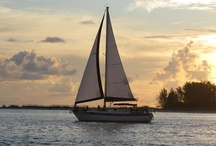 Setting Sail / Sailing is an exciting pastime and allows you to explore areas that only your fellow sailors have laid eyes on! It's about discovery. It's about adventure. It's about those sparkling starry nights and breathtaking sunsets. Most of all, it's about fun!  See some of the top sailing destinations and sightseeing tours to start planning your escape.