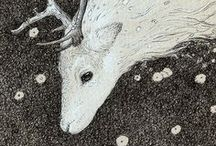 Animals(Art) / by Libby Carlson