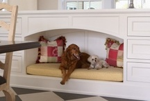 Pets and Animals / A home wouldn't be a home without our animals! Why shouldn't they be comfortable? This board offers practical solutions to incorporating your pet's paraphernalia into your home decor. Here are some of most popular DIY projects and products designed for our furry and feathered friends! BOARD RULES: https://goo.gl/nGJ4Dx