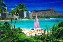My Travels: Tropics / by Maureen Hart