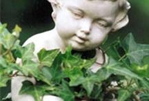 Open Dag Nijmeegse Stadstuinen / Zaterdag 10 juni 2017 van 10.00 - 17.00 uur is iedereen weer van harte welkom in de open stadstuinen! Nijmegen achter de schermen, of beter gezegd: achter sierhagen en tuinhekjes. Iedere liefhebber heeft van zijn of haar tuin een paradijsje gemaakt. Exotische bloemen en planten, prachtige vijvers, sierlijke terrassen, bijzondere beelden: er zijn dit jaar weer heel veel verschillende tuinen te bewonderen.  Op dit prikbord al een virtueel voorproefje.
