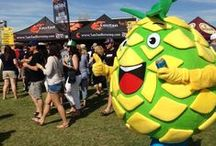 Mr. Pineapple is BACK! / Mr. Pineapple deserves his own board don't you think? Some of our favorite photos from our fans, events + more.