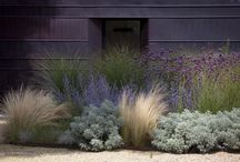 Grasses & ... / Nice Combinations & Dutch Wave