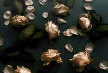 My pictures, art & garden on pinterest and web / ofwel, waar blijft mijn materiaal...