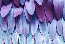 Beautiful and Bold - Jewel tones / Jewel toned bold colour palette