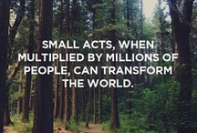 Make a Positive Impact / by Trees, Water & People