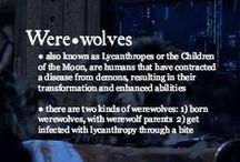 Werewolves / by Summer Meredith