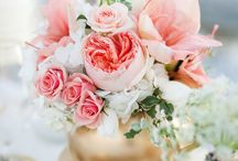 Shades of Coral Vintage Wedding / Katherine Grace be wed!  All things to inspire a vintage, lacy, classic, lovely wedding day!  Divine hues of coral, creams, and touches of green (or aqua).