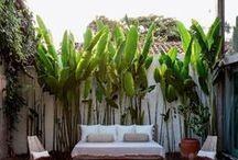 Fab Backyard ideas / by C Hernandez