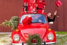 carpoos • Christmas Car / by carpoos .com