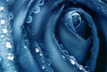 Azul-celeste-turquesa