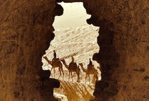 Travel: Africa & The Middle East / by Linda Chumbley