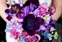 Fleurs / by Audrey Macy