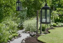 Great Gardening & Landscape Ideas