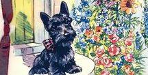 Scotties, Westies, Cairns, Terriers~ / Images of Scotties, Westies, Cairns and all Terriers~