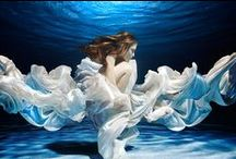Tranquility: Underwater Photography / by Elena Udovicic