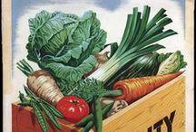 Keto LCHF Diet Tips / Keto LCHF Diet Tips / by Melissa Schulze