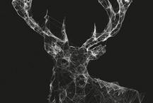 Design / by Marisa Steyn