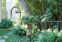 Shade Garden / by Kathy - South of Main