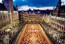 magic carpet destinations