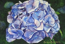 SHADES OF BLUE / Love the blues! They don't make me sad, just happy with their infinite variety of shades and textures! You are welcome to add your favorite blues (no more than one/day, please). I'd love to see your choices. Maybe you'll find some new blues, too! / by Barbara Rosenzweig Art