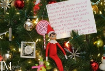 Shelf Elf / by Sharon Harnist