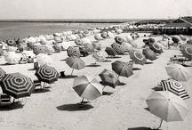 Umbrella-ella-ella / by Dorothy Reed