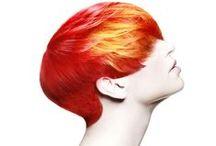 Fan the FLAME / On Fire / by Nancy Bortz