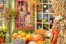 Fall Visual Display Inspiration / Visual merchandising ideas / by Two's Company