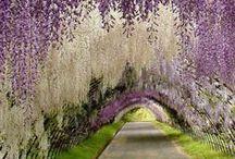 Amazing places / by Jenna Robinson