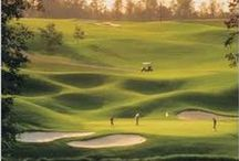 Golf vision / The amazing golf sport course and more