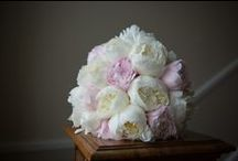 Wedding Flowers and Bouquets / Images of flowers, bouquets, button holes, boutonnieres
