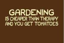 Gardening / by Katie